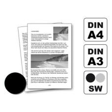 Kopien A4 80g/m² 1-250 Kopien
